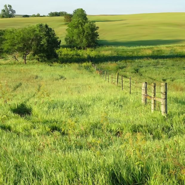 GREEN-FIELDS-SQ.jpg