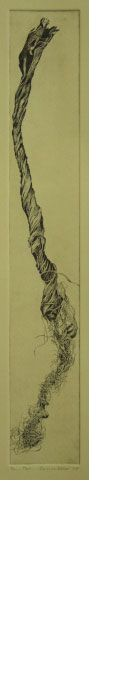 Tail-of-10-2.5x23p500-etching-y-gouache.jpg